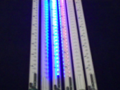 "11"", 19"", 31"", 39"" LED Snowfall Lights"