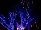 "12"", 24"", 36"" Minleon Cascading Snowfall Lights"